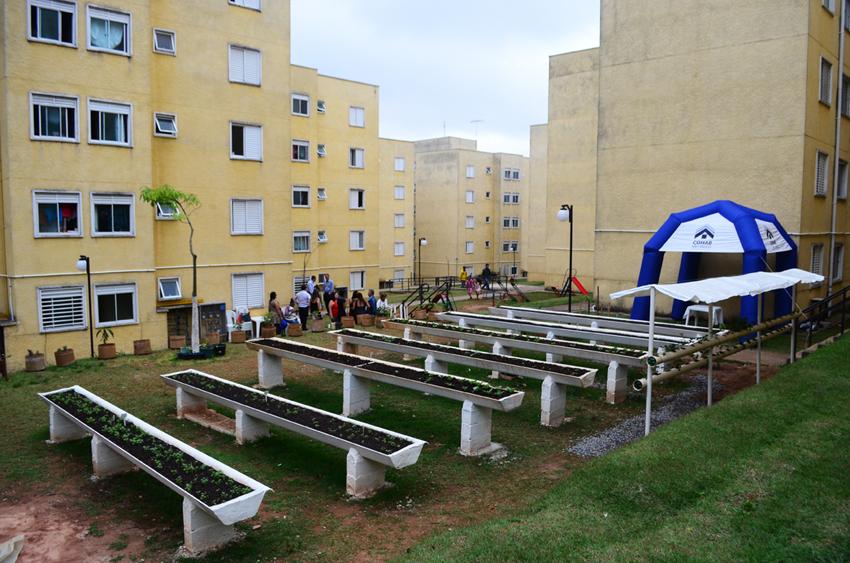 Carrossel de Imagens - Imagem 4 - Cohab e SMDE firmam parceria para criar hortas comunitárias nos conjuntos habitacionais